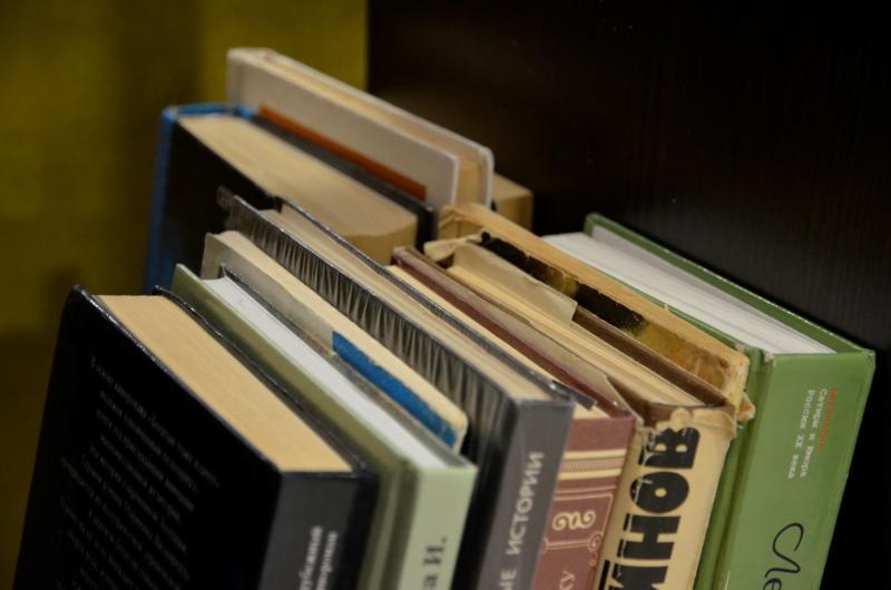 Мастер-класс по литературе прошел в библиотеке имени Пушкина