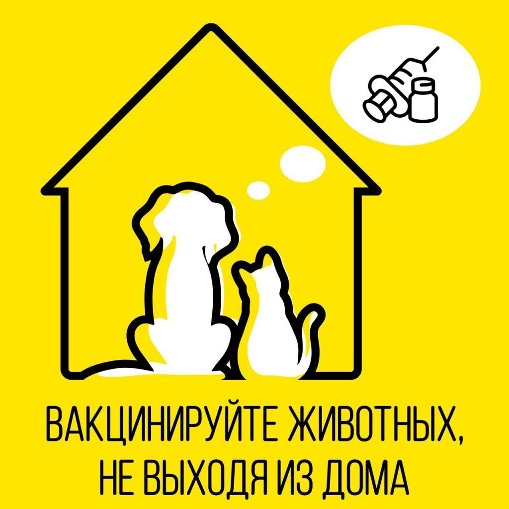 Ветеринары смогут приехать домой к москвичам-владельцам животных для вакцинации